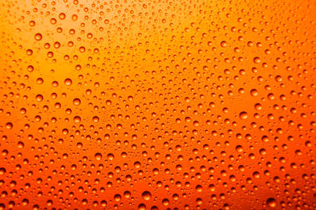misted: misted glass of beer close up of an orange bright background