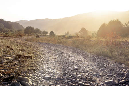 The horizontal shot of stone dusty road in a dry valley on a background of bushes. Stock Photo
