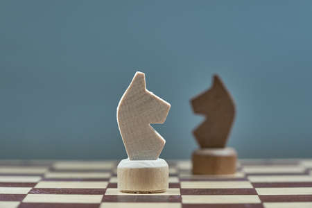 Horizontal shot of two chess horse. The concept of confrontation.