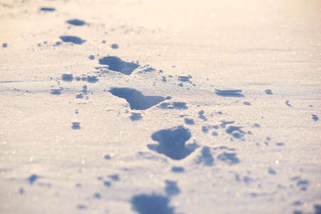 Human traces on a snow. Winter background.