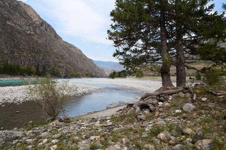 katun: Amazing Mountain Altai landscape with river Katun