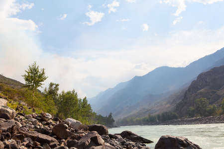 Beautiful view of mountain river in summer, Altai Mountains, Russia
