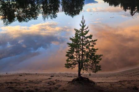 Nature of Russia. The Republic of Karelia. Islands on the horizon. Wild nature. Calm on the lake. Chirka-Kem river.