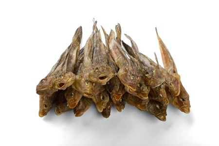 Dried fish isolated on a white background photo