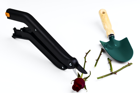 secateurs: garden secateurs isolated on a white background