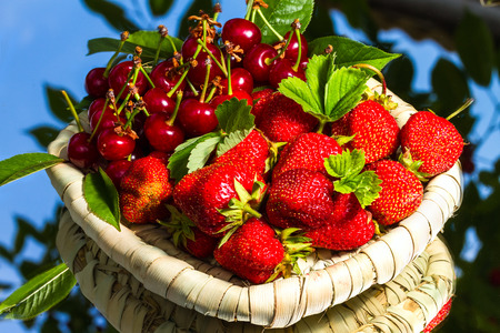 mirror: Strawberry and cherry on mirror
