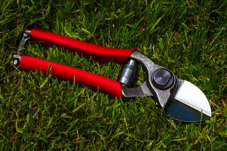 professional garden secateurs on a grass background