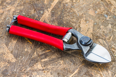 stainles steel: professional garden secateurs on a wooden background