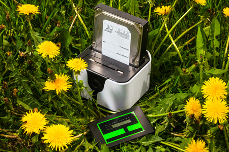 adapters: wireless routers-docking station with hard disk and solid state drive on on lawn with dandelions Stock Photo