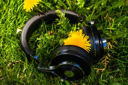 タンポポの芝生の上旅行の無線ヘッドフォン