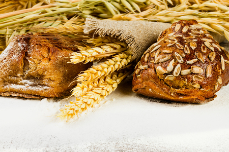 white bread with spikelets of wheat, oats and rye on wooden background with flour Фото со стока