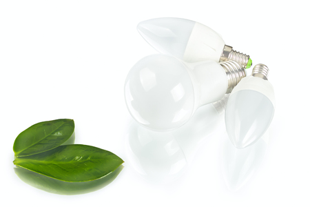 White innovation energy-saving LED bulb, glow-lamp, dry and fresh leaf on white background