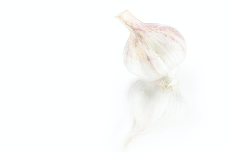 fresh nice garlic bulb with reflection on white background Фото со стока