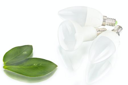 white innovation energy-saving LED bulb, glow-lamp, dry and fresh leaf on white background Фото со стока
