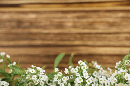 empty wooden wall with white flowers at the bottom, clean textured brown background for inscriptions.