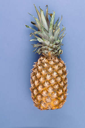 Ripe whole pineapple with leaves on light blue background. Vertical photo.
