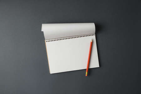 Open spiral notepad with white pages and pencil on gray background top view horizontal photo. Imagens