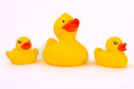 Yellow rubber duck and two small duckling on a white background. Stock Photo
