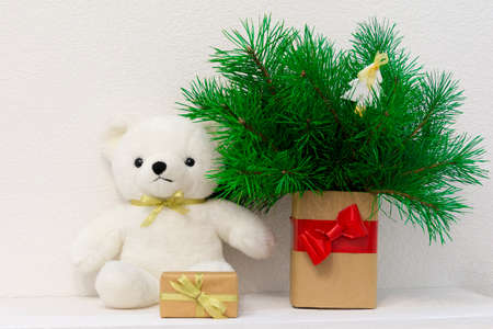 Concept of interior decor. White bear toy for baby, gift box, fir tree in craft-paper vase against wihte wall Stock Photo