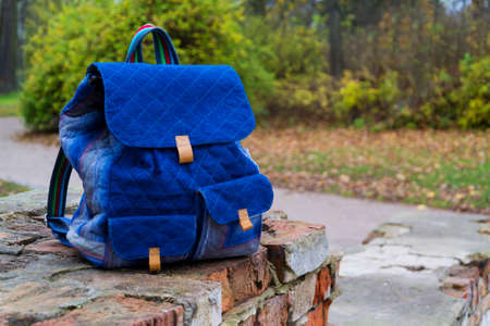 School backpack on brick wall against forest
