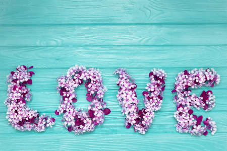 Wprd Love made of with white purple cherry blossom flowers on blue background Concept for Valentines day. Stock Photo