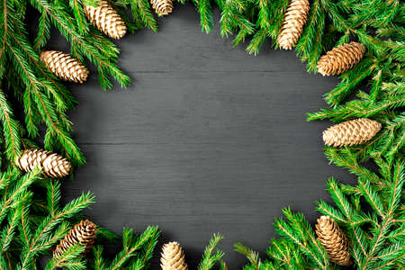 Christmas round frame of winter tree branches with cones on white background. Festive winter background.