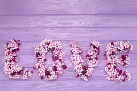 Inscription Love made of cherry blossom flowers on purple wooden background. Design elements for Valentines day.