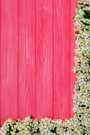 Beautiful spring bloom flowers on pink wooden background