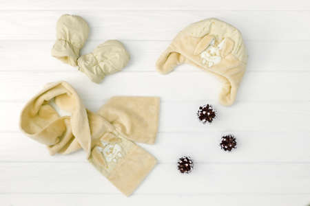 Autumn or winter fashion outfit. Baby set of clothing on the wooden background.
