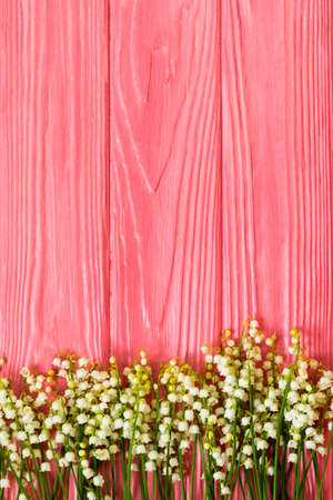 spring background, fresh flower on pink background. Stok Fotoğraf