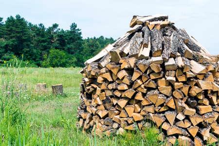 Wooden firewood stumps on a green grass Stock Photo - 122263263
