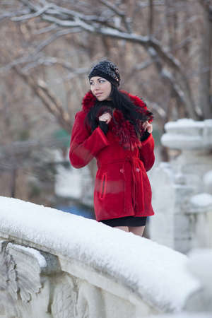 Beautiful young woman at winter. Young beautiful brunette in red standing in the winter park looking away Stock Photo - 12152276