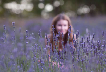 focus on foreground: Young woman in the field of blossoming lavender. Attractive girl hiding behind a bush of blooming lavender. Focus foreground Stock Photo