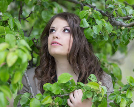 surrounded: Portrait of young woman looking up. Girl posing surrounded by leaves of pear tree Stock Photo