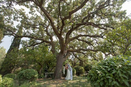 newly wedded couple: Newly wedded couple under oak-tree. Just married walking in park in day of them wedding Stock Photo
