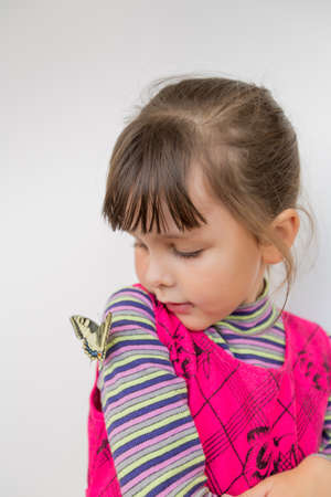 russian ethnicity caucasian: Child and butterfly. Portrait of preschool girl with papilio machaon Stock Photo