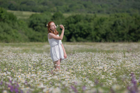 rural scene: Ginger girl smells wildflowers. Young redhead woman smelling chamomile on field