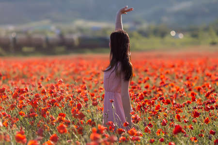 observes: Girl at blooming poppy field. Young woman observes train, standing in poppy field, rear view