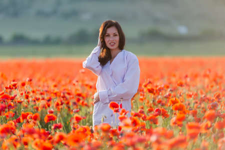 blouse sexy: Girl at blooming poppy field. Young woman posing in poppy field in evening time