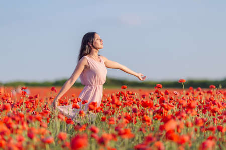 poppy field: Girl at blooming poppy field. Young woman posing in poppy field in evening time