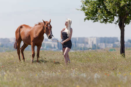 gelding: Blonde woman with gelding. Young blonde woman in polka-dot dress holding the reins of brown horse