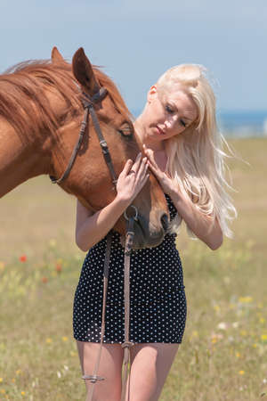 stroking: Blonde woman stroking gelding. Young blonde woman in polka-dot dress with brown horse