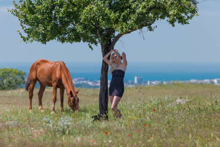 gelding: Landscape with blonde woman, gelding and tree. Young blonde woman in polka-dot dress and brown horse