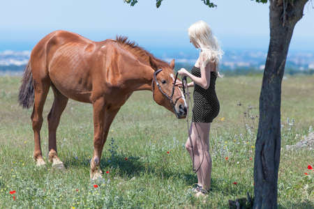 gelding: Blonde woman, gelding and tree. Young blonde woman in polka-dot dress with brown horse