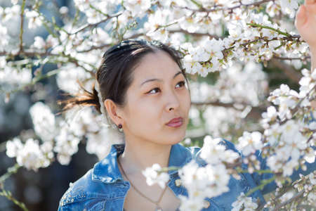korean girl: Korean girl in blossoming park. Portrait of Asian young woman among blossoming almond branches Stock Photo