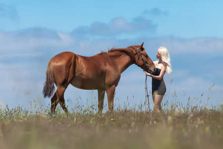 horse blonde: Blonde woman stroking gelding. Young blonde woman in polka-dot dress with brown horse