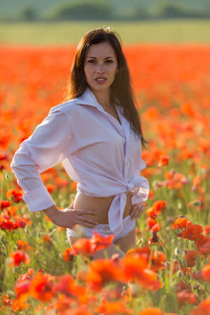 Girl at blooming poppy field. Young woman posing in poppy field in evening time