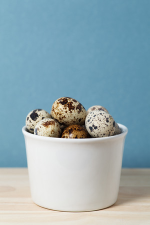 pigeon egg: Quail eggs on a blue background