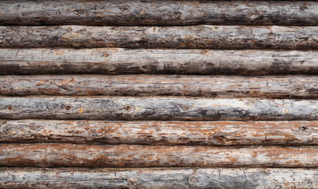 log house: Old wooden log house wall background  texture