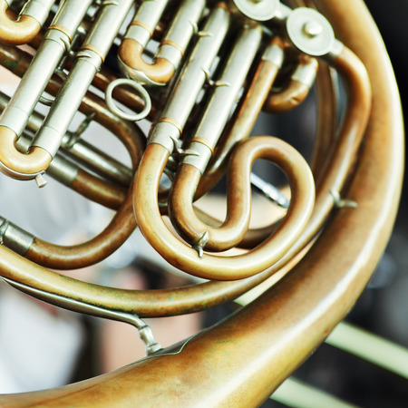 french horn: Close-up of a french horn Musical Instrument